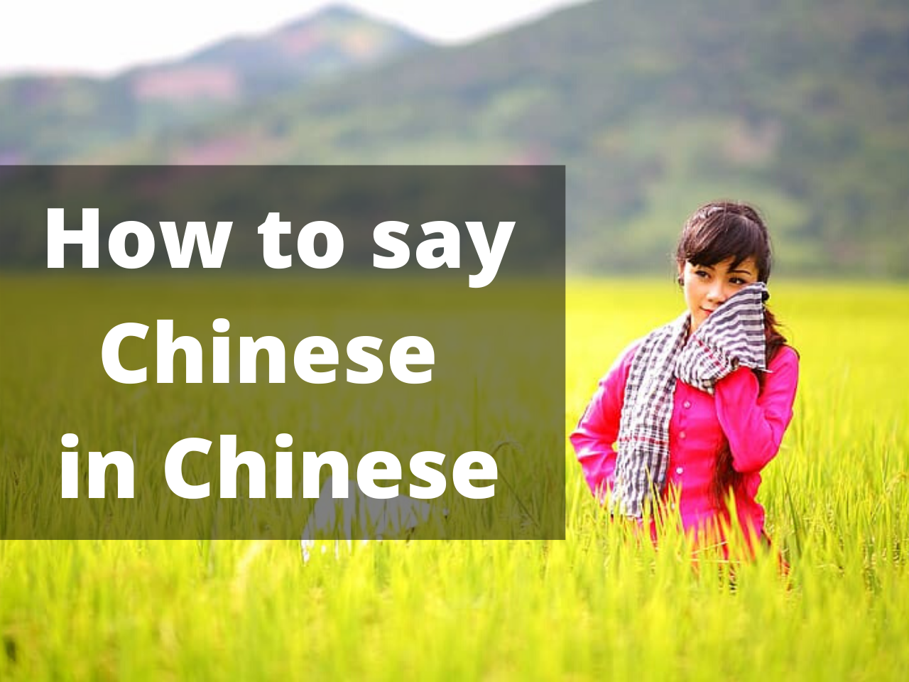How to say Chinese in Chinese
